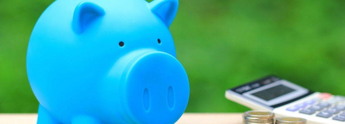 penge, privatøkonomi og opsparing